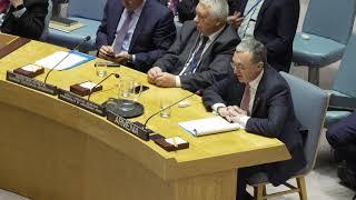 Զոհրաբ Մնացականյանի խոսքը  ՄԱԿ Անվտանգության խորհրդի հանդիպմանը