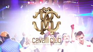 Cavalli Club Dubai Restaurant  Lounge x Dubais 1 Luxury Venue