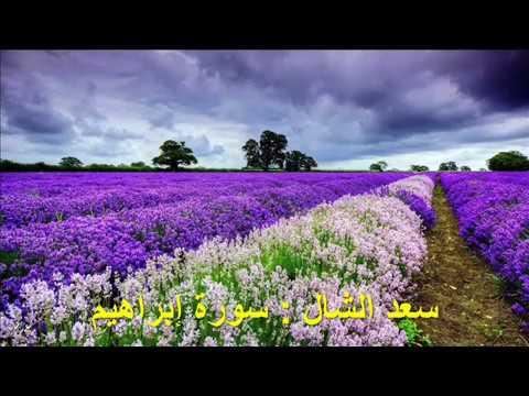 014 - إبراهيم