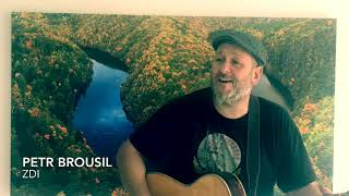 Video ZDI - Petr Brousil