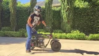 Mini Motos Con Motores Grandes