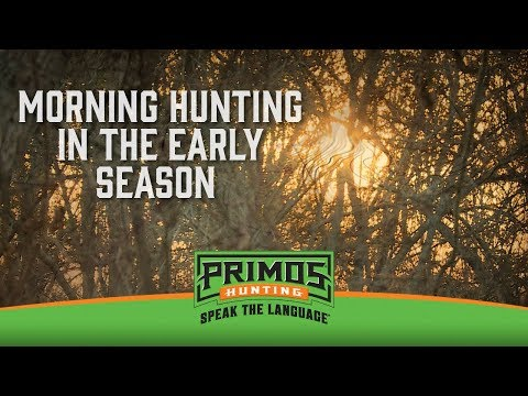 Early Season Deer Hunting in the Mornings video thumbnail