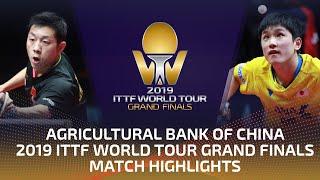 Xu Xin vs Tomokazu Harimoto | 2019 ITTF World Tour Grand Finals Highlights (1/4)