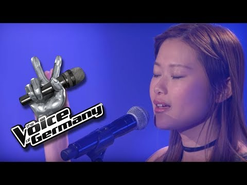 Simon & Garfunkel - The Sound Of Silence | Hang-Shuen Lee | The Voice of Germany 2017 | Audition