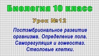 Биология 10 класс Урок 12