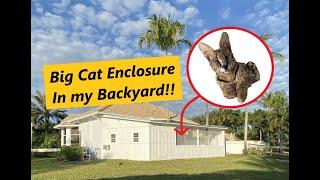 BUILDING A BIG CAT ENCLOSURE IN MT BACKYARD! (Getting A Pet Serval!!)