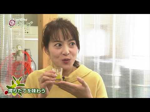 トレビアン!香川県産オリーブ《香川県》