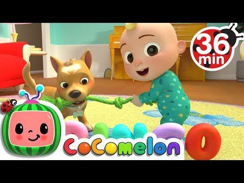 Bingo   +More Nursery Rhymes & Kids Songs - CoCoMelon