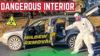 Deep Cleaning My $500 MILDEW INFESTED Volkwagen Passat Wagon