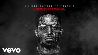 Prince Kaybee - Umenitosha (Visualizer) ft. Polaris