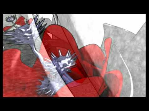 """La bande à Mani """"Un peu de toi"""" (animation)"""