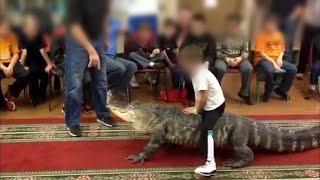 Kid Birthday Parties with Alligator Rides?