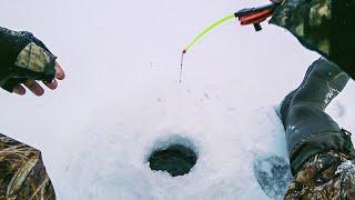 Ловля окуня на озере по первому льду