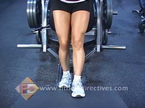 Lever Reverse Calf Raise (on v-squat machine, plate loaded)