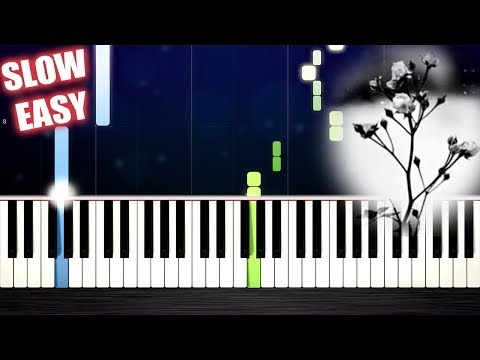 Mariage d'Amour (Spring Waltz) - SLOW EASY Piano Tutorial by PlutaX