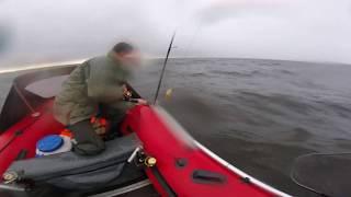 Рыбалка на рыбинском водохранилище прокат лодок