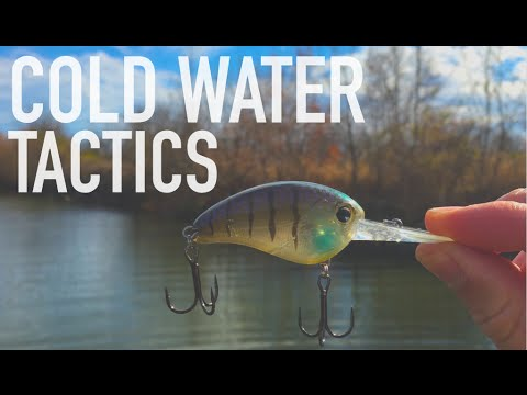2 Cold Water Tactics You NEED To Try — Bass Fishing