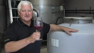 How to Make Shiraz Rose Wine : Wine Topics