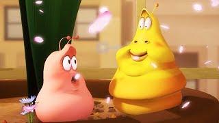 LARVA - CHUBBY LARVA | Cartoon Movie | Cartoons For Children | Larva Cartoon | LARVA Official
