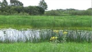 Пинск рыбалка в пинске и районе
