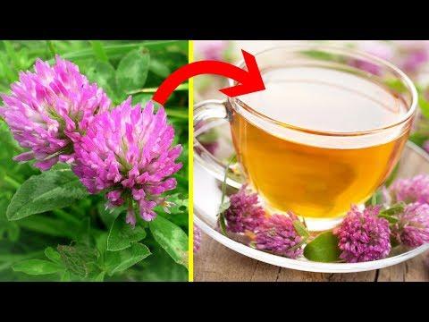 Полезен ли мёд при гипертонии