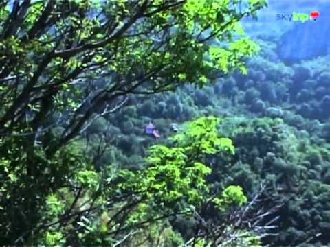 SkyTrip - Cheile Cibului