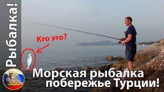Рыбалка на средиземном море с берега в турции