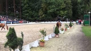 video of Dornik B