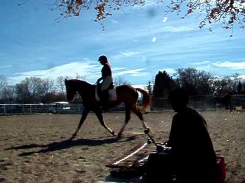 Horse Dance with Facinet Balafon E