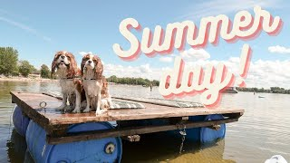 SUMMER DAYS ARE THE BEST! // Cavalier King Charles Spaniel Vlog August 6-7
