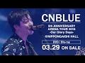 CNBLUE熱狂のアリーナツアーがDVD/BD化、屋台でしっぽり&名物占い師登場の特典映像も