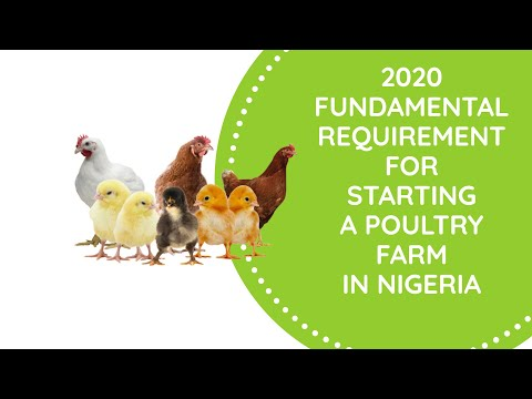 , title : 'fundamental requirments to get started in Poultry business in Nigeria.