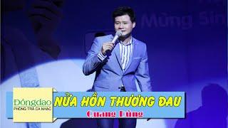 Nửa Hồn Thương Đau - Quang Dũng [MV HD]