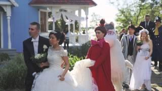 Fairytale Wedding With Moomins   Finnair