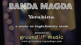 Yerakina - A Study in High Fidelity Birds