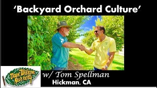How To Care For Backyard Orchard Fruit Trees  |  BACKYARD ORCHARD CULTURE @ Dave Wilson Nursery