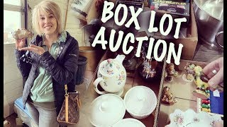 My FIRST Box Lot Auction EVER! | What should we buy?? | Reselling