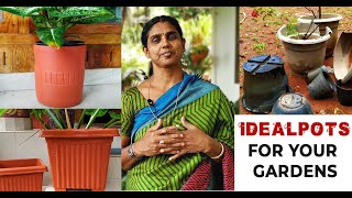 Ideal Pot For Your Garden   Tips For Beginners   Home Garden (Malayalam)