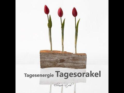 Tagesorakel Dienstag 19.03.2019 (видео)