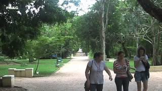 Jardim Botânico Do Rio De Janeiro, Rio De Janeiro