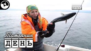 Мурманский рыболовный форум где треска 2020