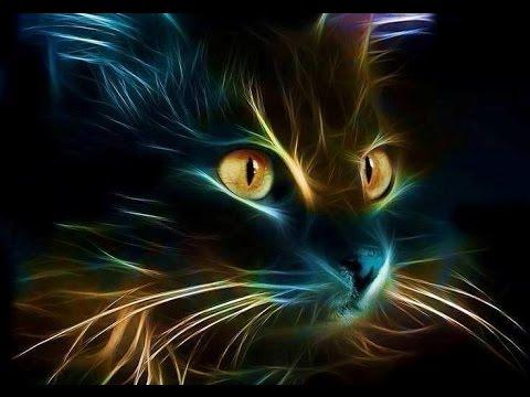 Колыбельная кошки - Детские песни для малышей