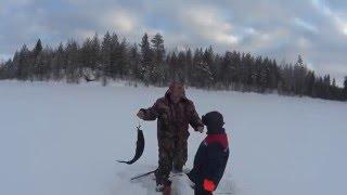 Рыбалка зимой на кольском полуострове