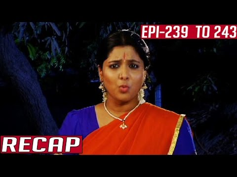 Ramanujar-Recap-Episode-239-to-243-Kalaignar-TV