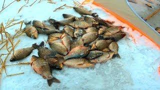 Кто был на рыбалке атяж курганская область