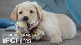 Trailer of Pick of the Litter (2019)