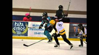 preview picture of video 'Canton Akron Hockey 1 2013'