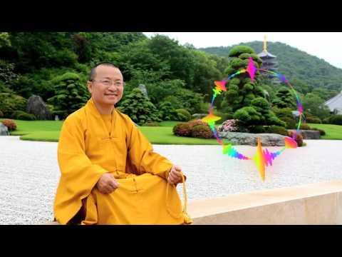 Đột biến cận tử và tính cách - Vấn đáp 5 (16/07/2005) Thích Nhật Từ