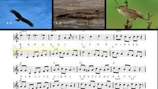 鳥の名の歌