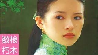 【数根朽木】《茉莉花开》姜文与章子怡的一段孽缘。